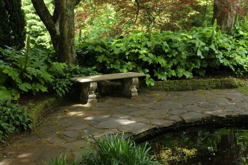 how to choose the perfect backyard water features better landscaping